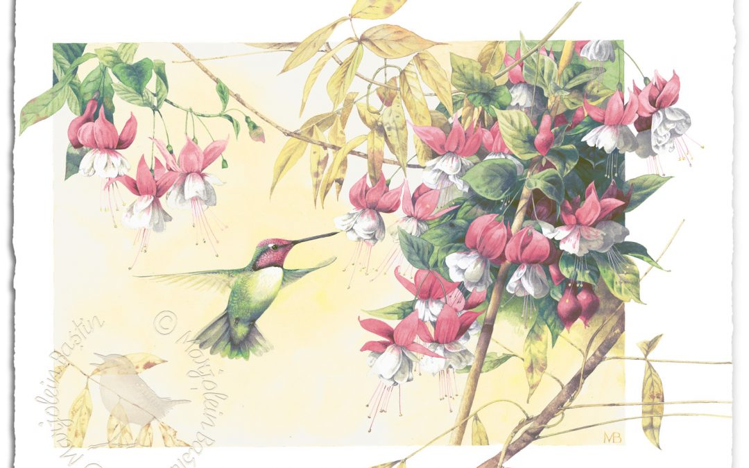 New Art Release: Whispers of a Hummingbird