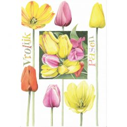 Tulips from Marjolein Bastin
