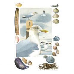 Seagulls and Seascape Finds from Marjolein Bastin
