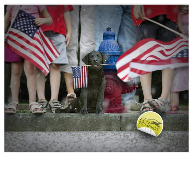 Sam – 4th of July Art by Ron Schmidt