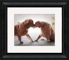 Dog Heart Art from Ron Schmidt
